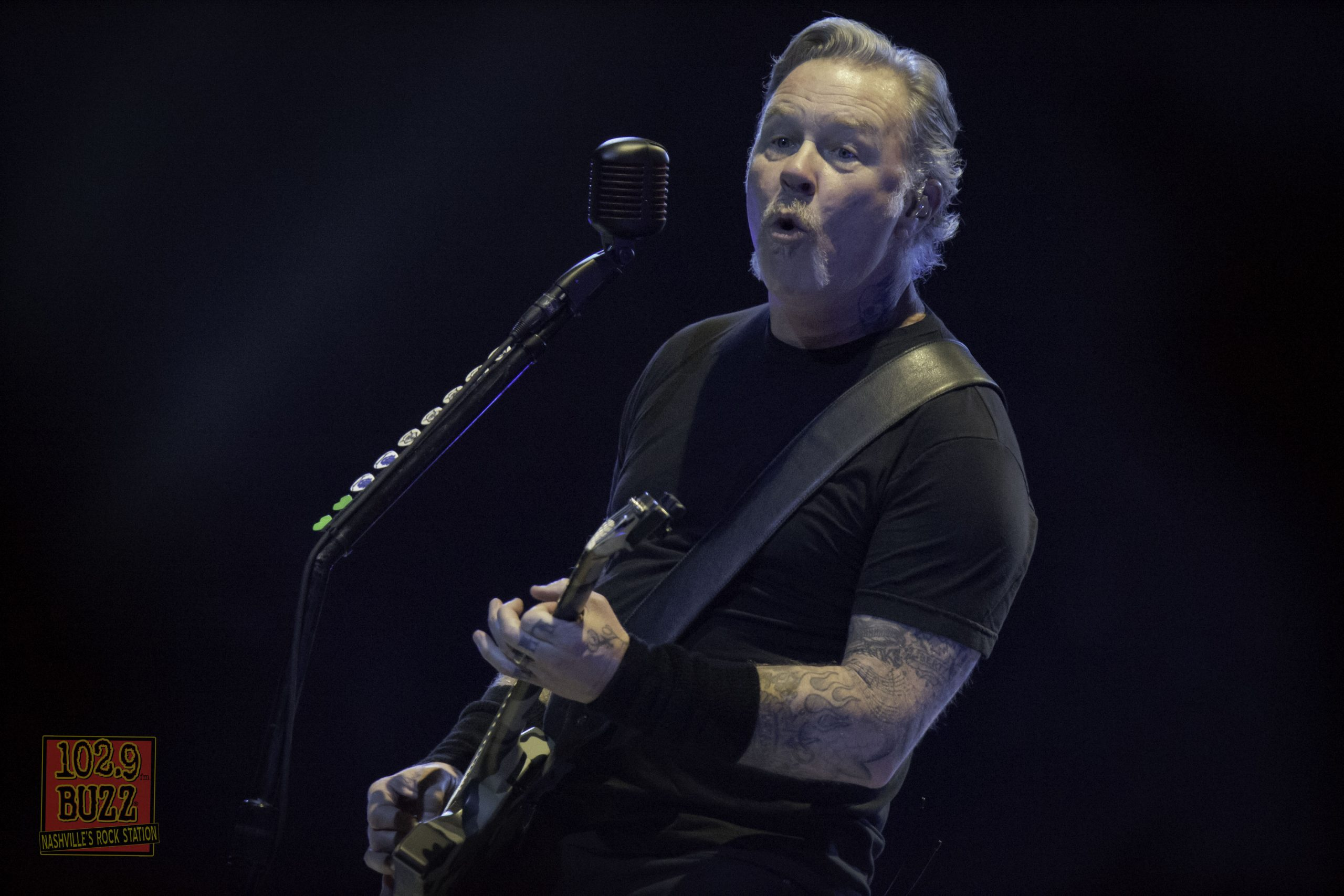 James Hetfield Responds to Woman Who Fought Off Cougar with
