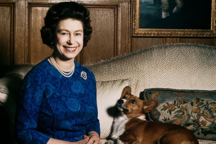 Queen Elizabeth's Last Corgi Has Passed Away