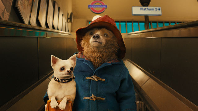 PADDINGTON BEAR 3 Is in the Works