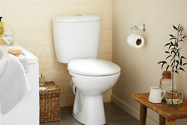 Toilet Stolen from West Virginia Home