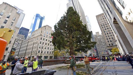 Rockefeller Center Christmas Tree Arrives for Holiday Season