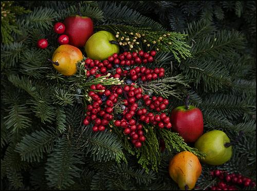 Nebraska experts offer tips to manage holiday stress