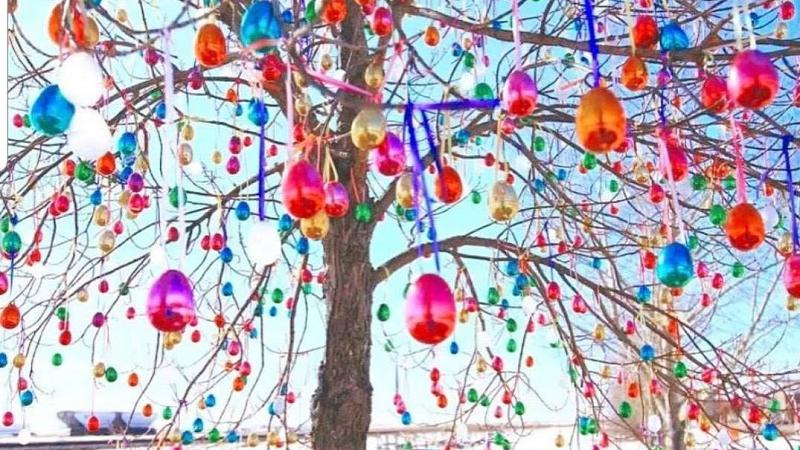 Aberdeen S Easter Miracle Tree Tradition Continues For Fifth Year Northeastnow