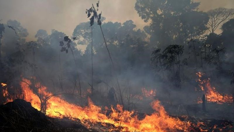 New Fires Broke Out in the Amazon