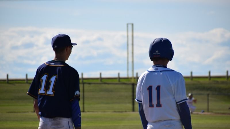 Playoff Picture Set In Wheatbelt Baseball League Everythinggp