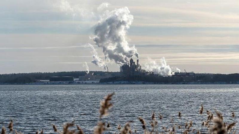 Province says Northern Pulp treatment facility proposal needs more work