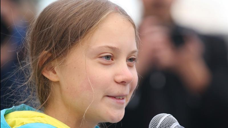 Greta Thunberg says graphic sticker shows 'we're winning'