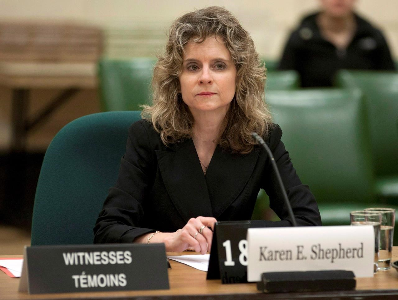 Watchdog to look at Apotex chair fundraiser, Democracy Watch