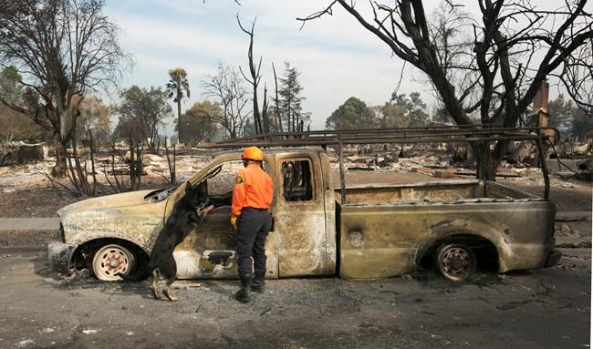 The Latest: Napa Valley school remain closed until Monday