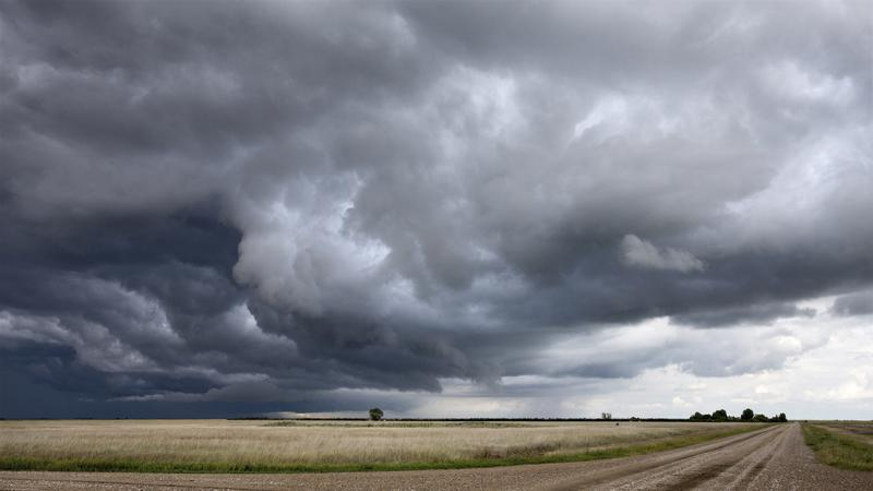 Environment Canada issues Severe Thunderstorm Warning | CKPG