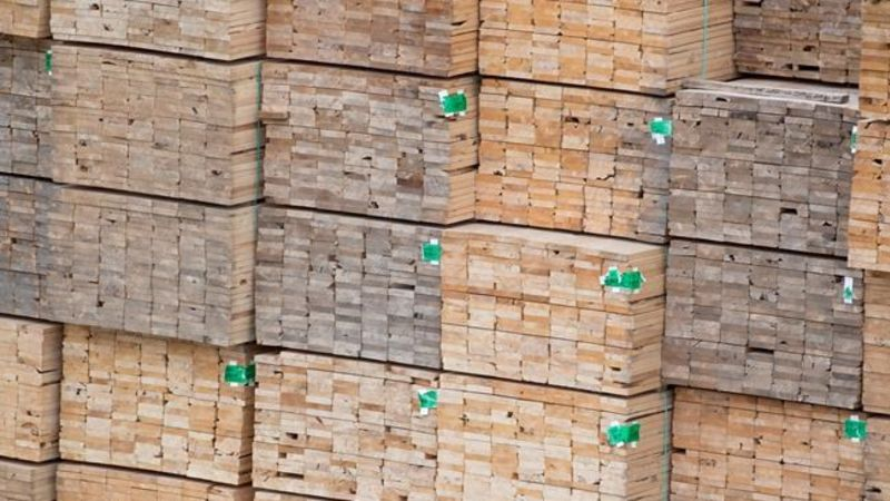 NAFTA panel says U S  can't show harm from Canadian softwood
