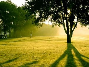 "Save Some ""Green"" at Decatur Golf Courses"