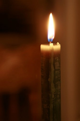 Dove Holding Series of Candlelight Ceremonies