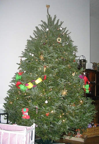 Lake Shelbyville Wants Your Used Christmas Tree