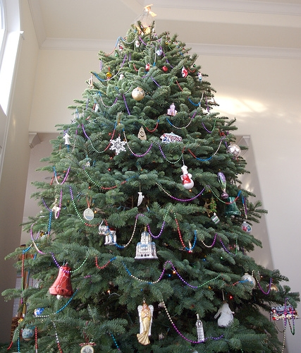 Decatur Composting Facility Accepting Christmas Trees