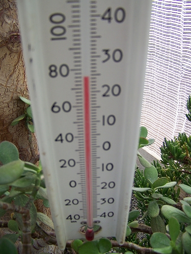 Record High Temperatures