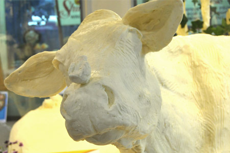 Illinois Butter Cow Unveiled Ahead Of State Fair