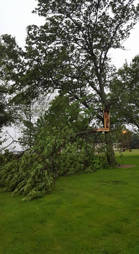 Strong storms wreaked some havoc on Saturday evening