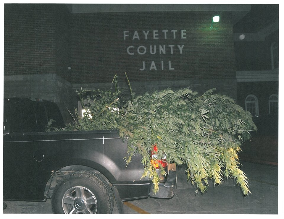 FCSO maybe helping with Lost and Found for someone's marijuana plants