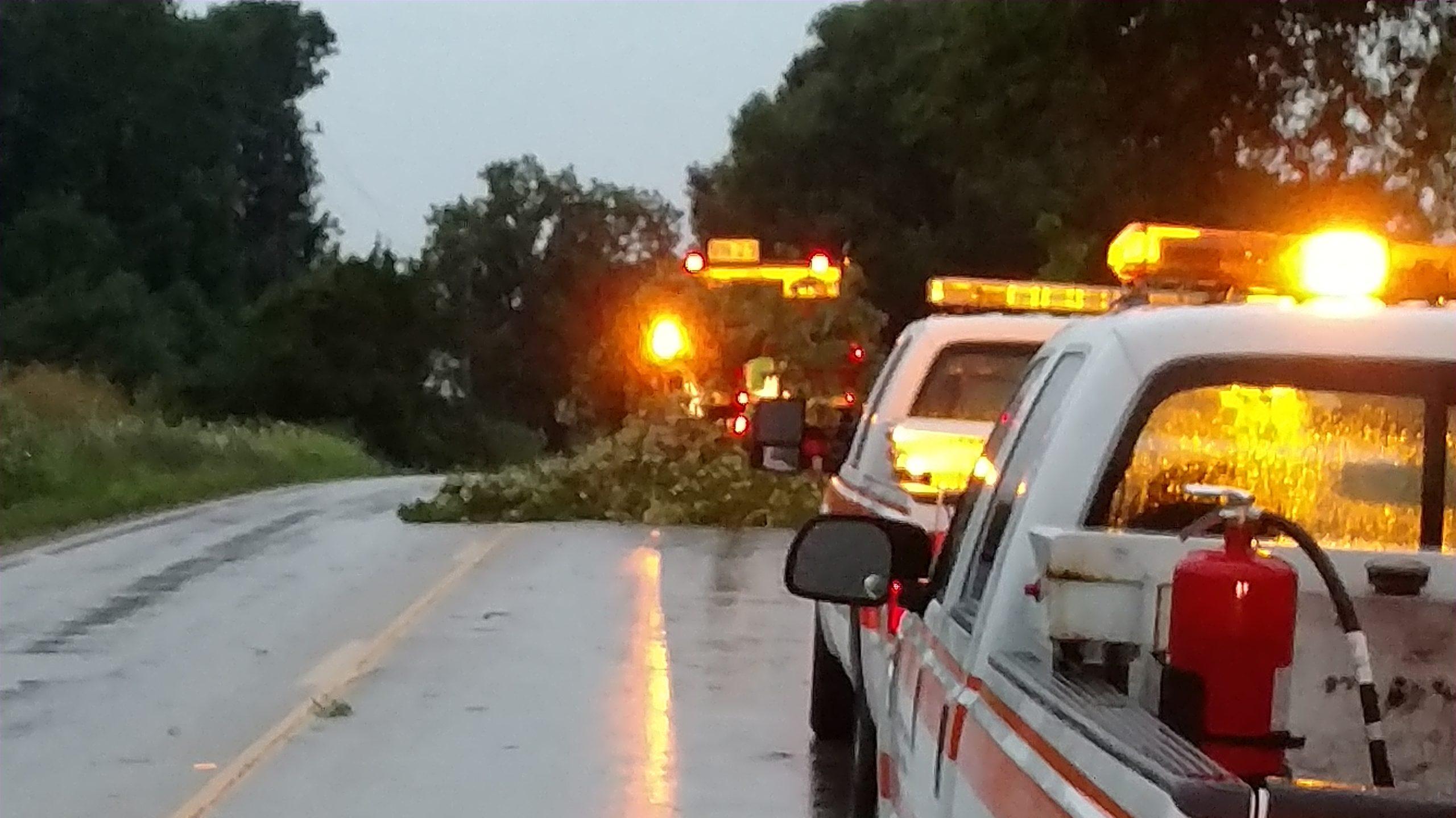 Several Limbs down, some trees down after early morning storms roll thru Fayette County