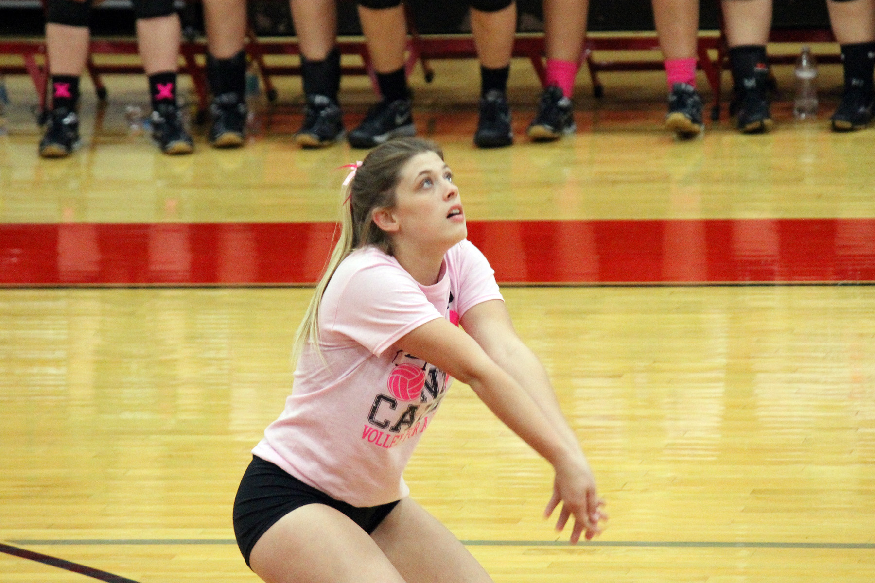 Lady Vandals fall to Greenville on Volley For the Cure Night