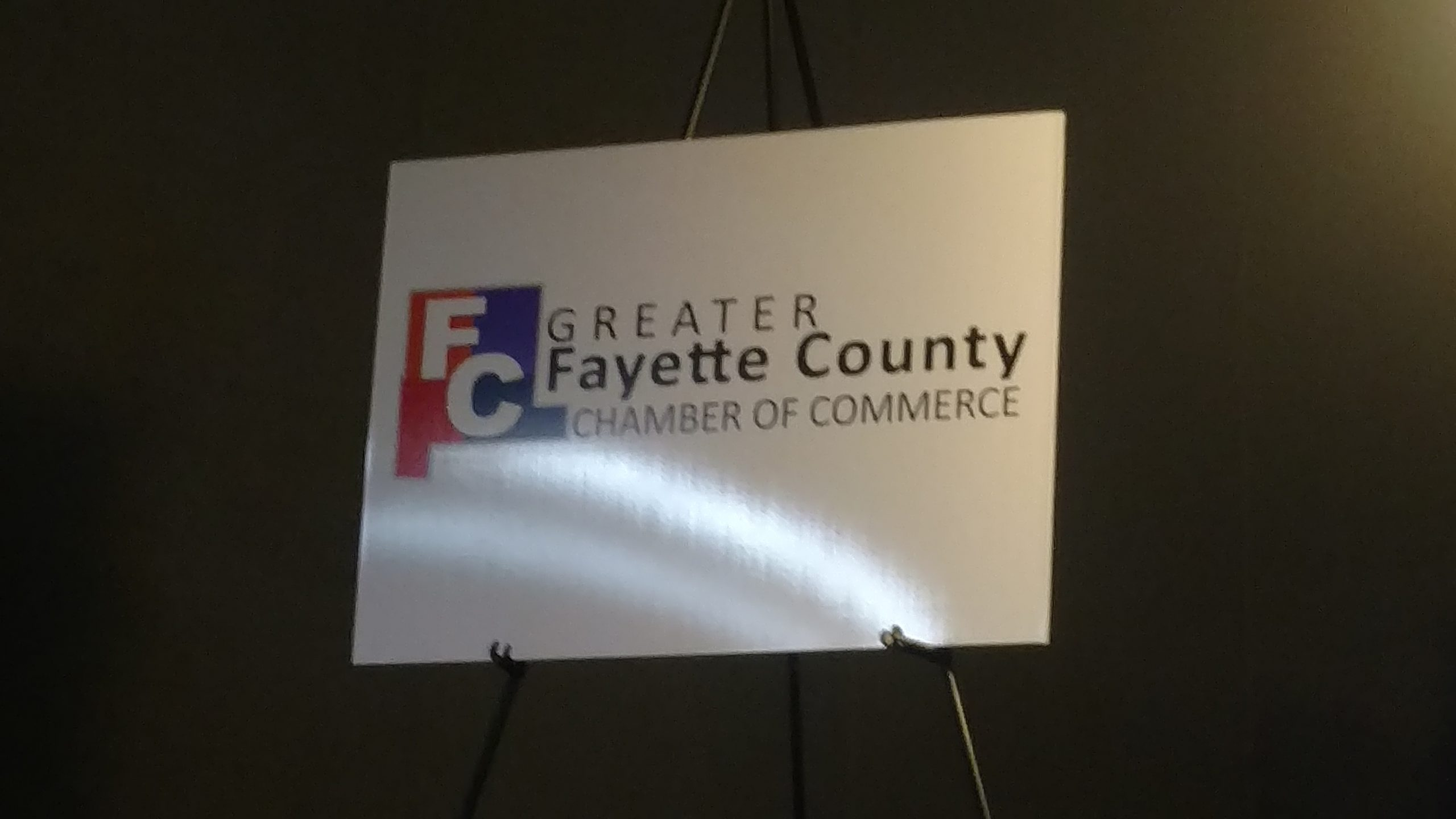 Hopkins, Wilber win Abe Awards--New Greater Fayette County Chamber logo unveiled