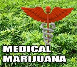 "Judge Orders ""Pain"" Added To Illinois' Medical Marijuana Program"