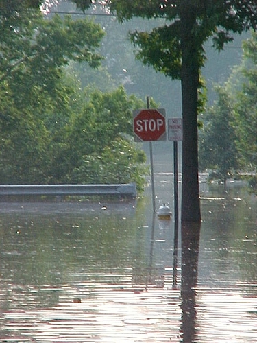 IEMA Reviewing Flood Damage Information Submitted  by Counties Impacted by December Floods