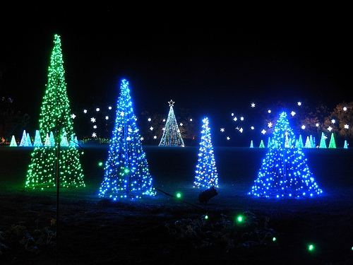 Last Week to See Peterson's Park Annual Light-Work Display
