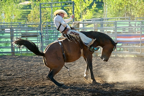Clay County Ranch Rodeo Saturday