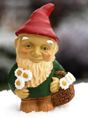 Strasburg Hog Roast and Gnome Fest Tomorrow