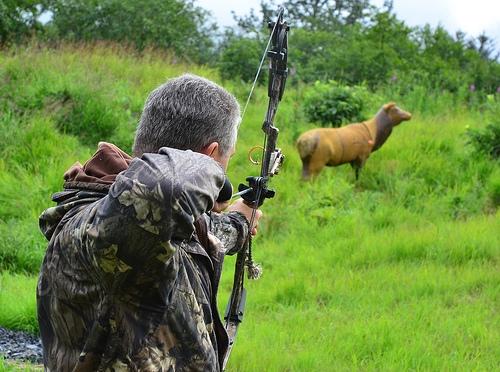 Deer Disease Warning for Hunters