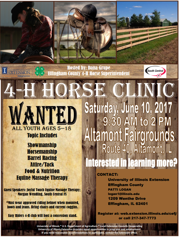 4-H Horse Clinic