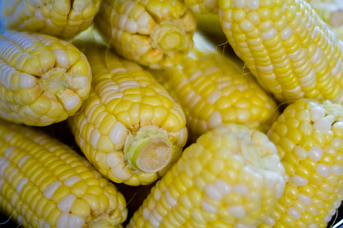 Mattoon Lions Club Selling Locally-Grown Sweet Corn