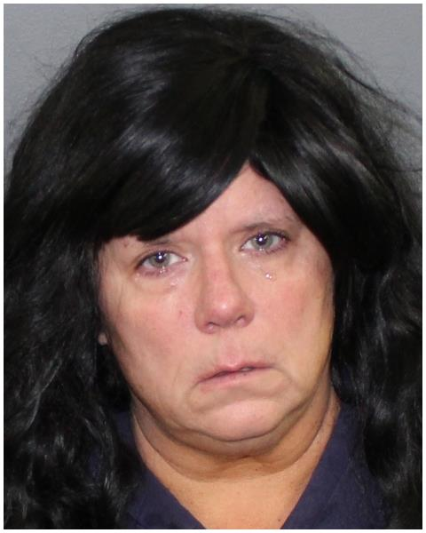 Mattoon Woman Charged with Disorderly Conduct and Threatening a Public Official
