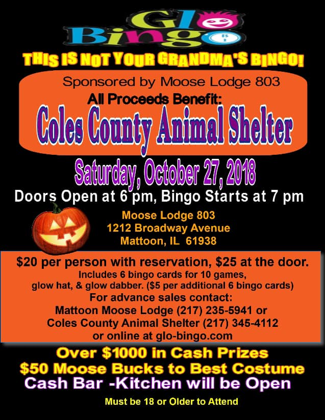 Glo Bingo to Support Coles County Animal Shelter