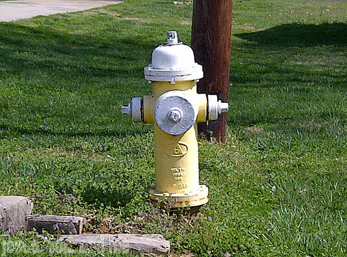 City of Effingham Public Works Department to Flush Fire Hydrants