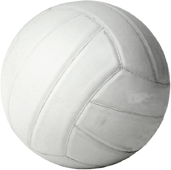 Local Sports Roundup:: Park District Volleyball Results