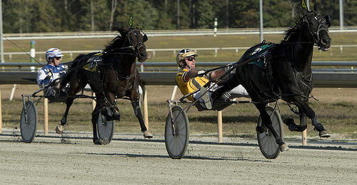 Churchill Downs Files Application For Harness Racing