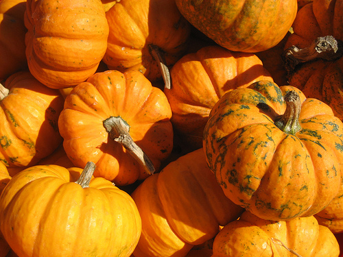 DCPS Schools to Host Fall Festivals