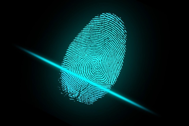 Ready, Set, Freeze: Protecting Your Digital ID