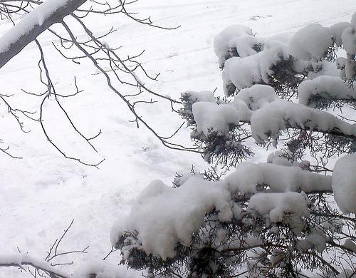 Early Season Winter Storm In Progress Now Through Thursday