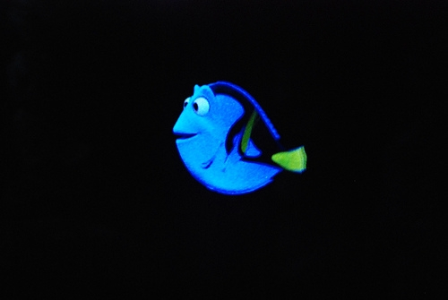 """First Official """"Finding Dory"""" Trailer"""