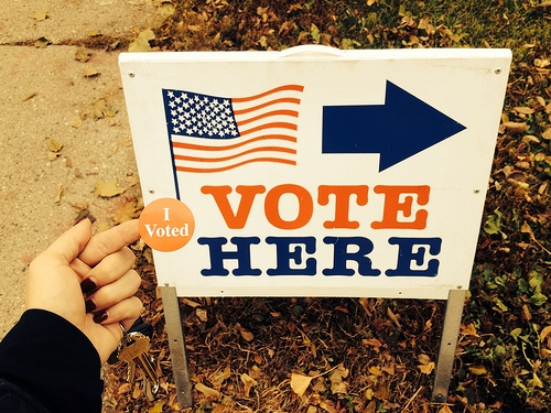 Where to Vote in Coles County