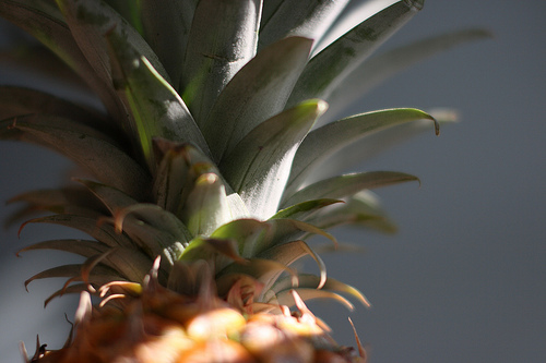 Pink Pineapples Are Now on Sale and Taking Over Social Media