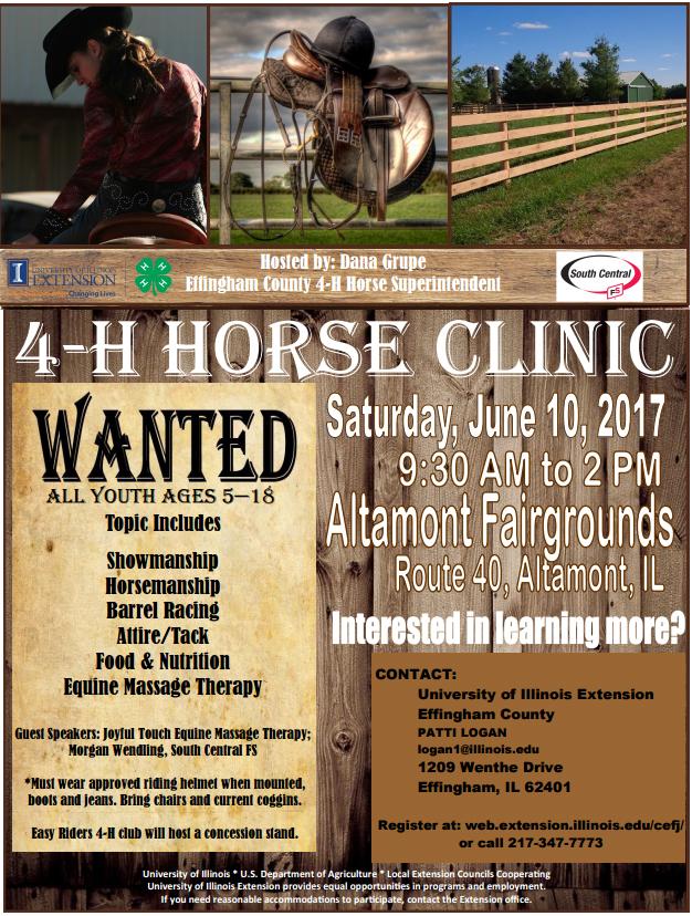4-H Horse Clinic