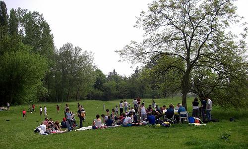 Windsor City Park Picnic