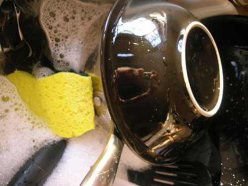 The Filthiest Thing in Your House Is . . . the Kitchen Sponge