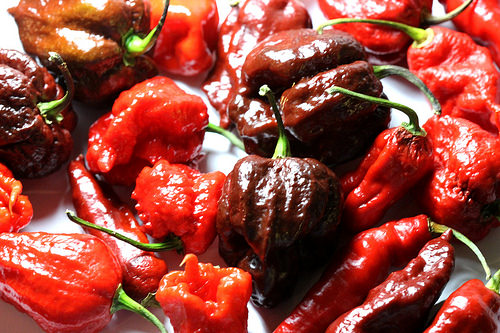 "A Man Winds Up in the ER With ""Thunderclap Headaches"" After He Eats One of the World's Hottest Peppers"