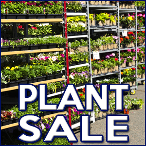 W.H.A.T. Community Group Plant Sale